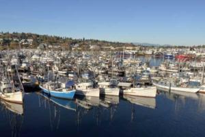 Marina and boats at Fishermans Terminal Seattle